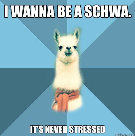LlamaSchwa